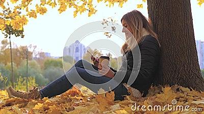Femme s'asseyant près de l'arbre en feuilles jaunes d'automne, utilisations Apps et café potable banque de vidéos