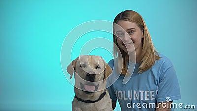 Femme souriante bénévole avec un chien adorable et pedigreed regardant la caméra, aidez les animaux banque de vidéos