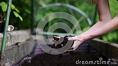 Femme tenant le sol fertile dans des ses mains