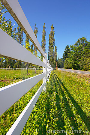Free Fence Beside Sunny Pasture Stock Photos - 21544823