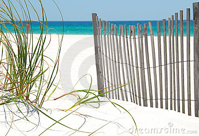Fence and grass on Pensacola Beach