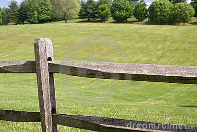 Fence and green field
