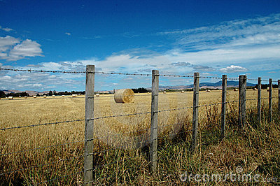 Fence and hay field