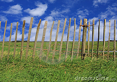Fence pasture