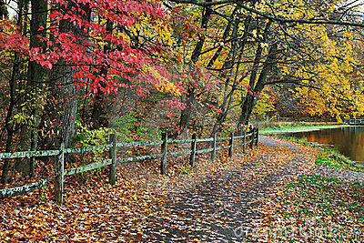 Fence And Path In Autumn