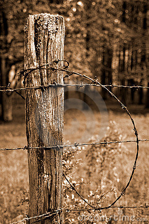 Fence Post And Barbed Wire Stock Photography Image 5706272