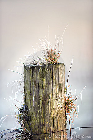Fence post in wintertime