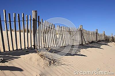 Fence on Sand Dune