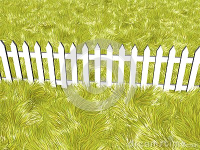Fence on a summers day