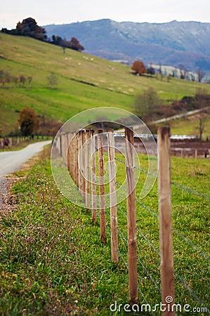 Fenced pastures. Rural landscape