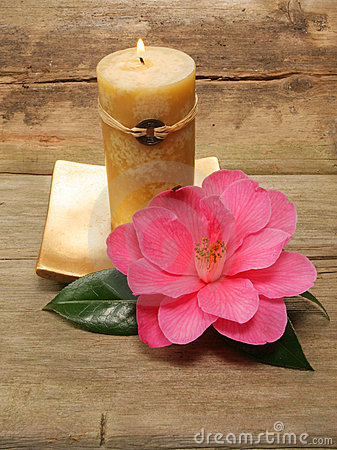 Free Feng Shui Candle And Camellia Stock Photos - 4833883