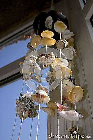 Feng Shui Shells