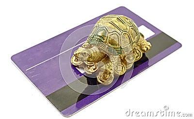 Feng Shui Tortoise Money