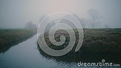 Ferme néerlandaise brumeuse sur un paysage vert et humide de pré pendant l'hiver Avec le roseau dans le premier plan banque de vidéos