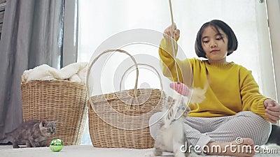 Fermez la belle enfant asiatique jouant avec des chatons banque de vidéos