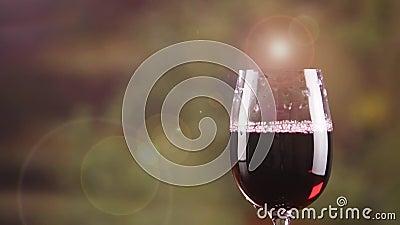Fermez-vous vers le haut du vin rouge en verre avec éclater le mouvement lent de bulle Un verre de vin clips vidéos