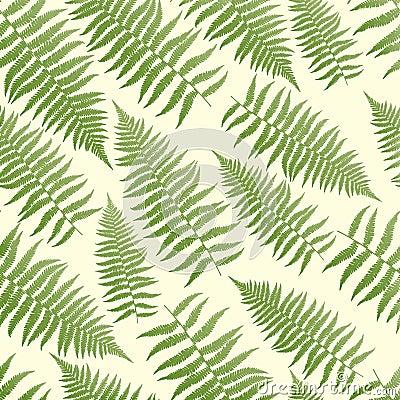 fern pattern background stock image image 2918911