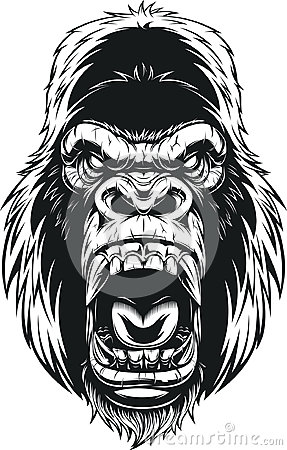 Free Ferocious Gorilla Head Stock Photos - 95091703