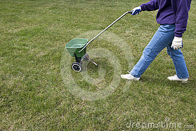 Fertilizer Grass Lawn Care and Home Maintenance