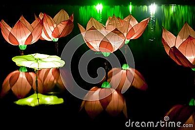 Festival lotus lanterns