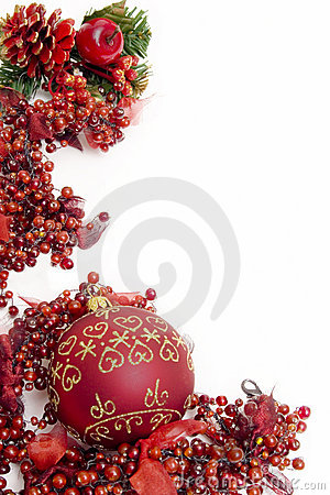 Festive christmas berries
