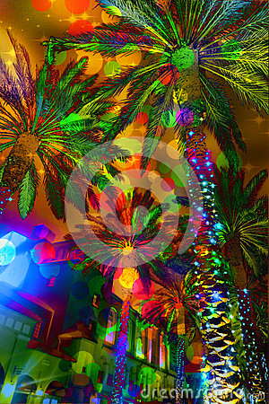 Free Festive Lights Abstract Palm Trees Royalty Free Stock Photo - 63971255