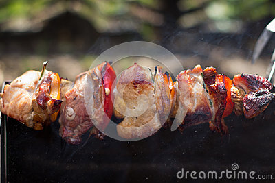 The festive outdoors simple barbecue - shish and kebab