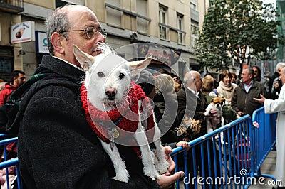 Festivity of St.ANTON . Madrid.SPAIN Editorial Stock Image