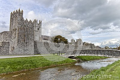 Fethard abbey in Co. Tipperary, Ireland.