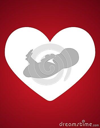 Fetus heart