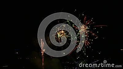 Feu d'artifice coloré dans le ciel nocturne banque de vidéos