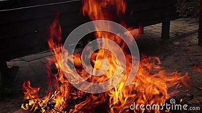 Feu de joie dans la rue, flamme, feu banque de vidéos
