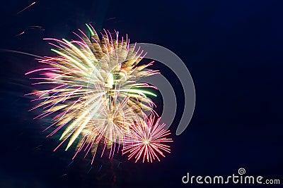 Feuerwerke des neuen Jahres auf dem Himmel
