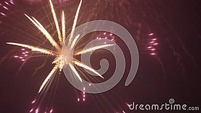 Feuerwerke geschlungenes Video stock video footage