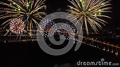 Feux d'artifice lumineux en l'honneur du festival au-dessus de la rivière banque de vidéos