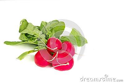 Few fresh radish on white