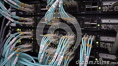 Fiber Optical Cables close up on Datacenter. Telecommunication Broadband. Blink Green Led Lights. Technology server. Concept stock footage