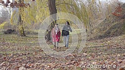 Fidanzato ragazzo medio orientale e ragazza caucasica tra gli alberi nella foresta autunnale... hippie della Carefree. stock footage
