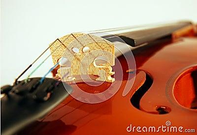 Fiddle close-up