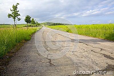 Field asphalt way