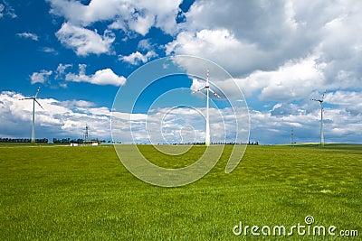 The field in Austria