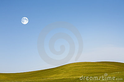 Field and blue sky with moon
