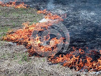 Field flame