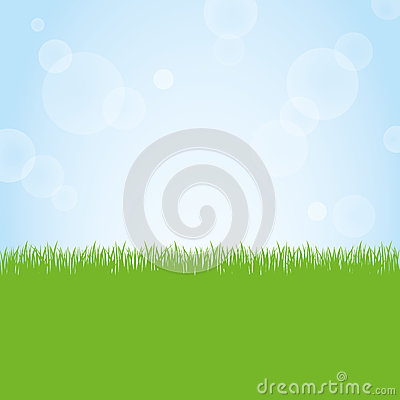 Field of green grass and blue sky background illustration Vector Illustration