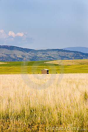 Field in Helena with a Shed and Mountains on the Background