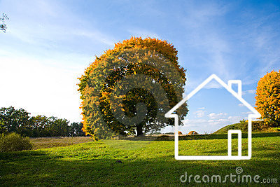 Field landscape and house
