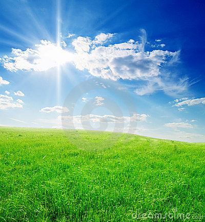 Free Field Of Green Grass And Blue Cloudy Sky Royalty Free Stock Image - 6363756
