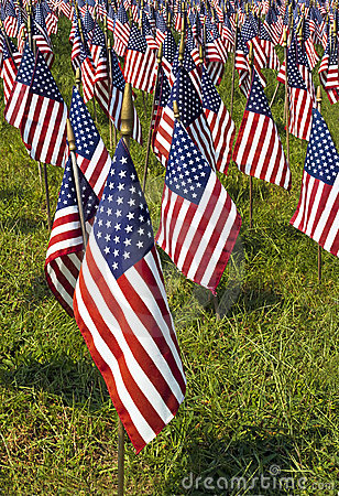 Free Field Of United States Flags Royalty Free Stock Photos - 21110738