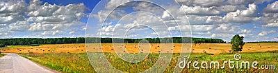 Field rick panoramic