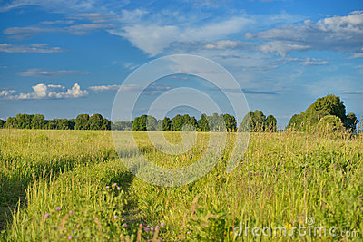 Field with road and blue sky